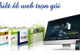 dịch vụ Thiết kế website trọn gói có những ưu điểm nào?